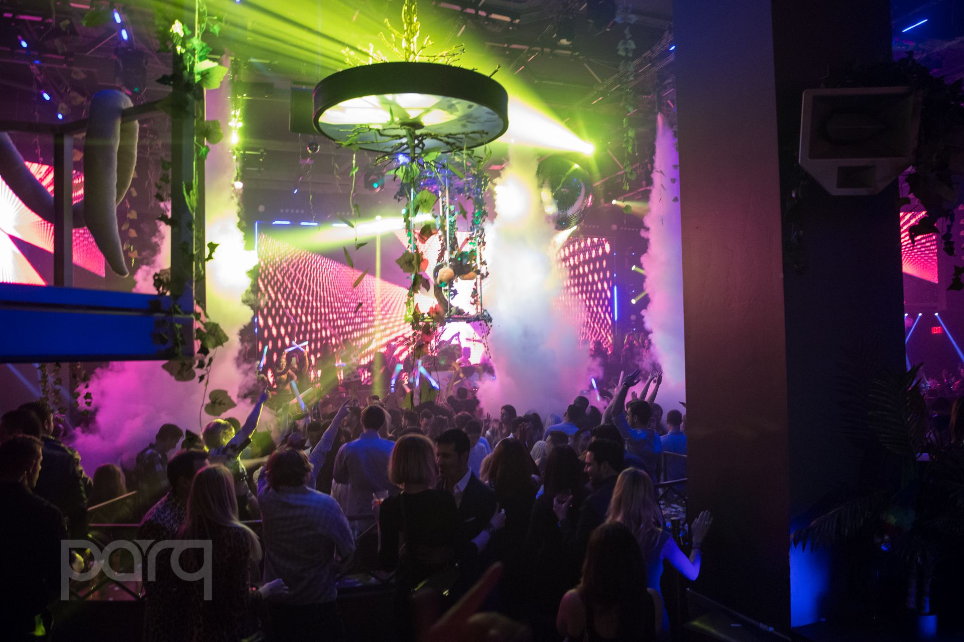 San-Diego-Nightclub-Zoo Funktion-43.jpg