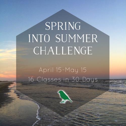 Spring into Summer Challenge.jpg