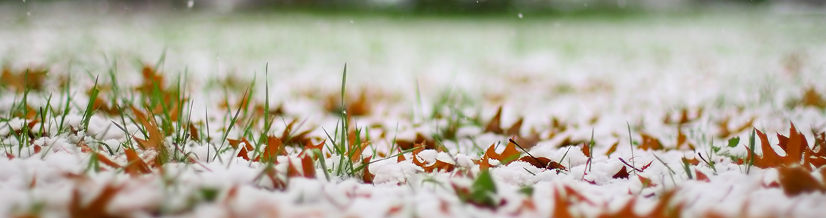 020218 - How Snow Droughts Impact Landscaping-Social & Blog Post Image-Hero Image Size - 1200 x 317.jpg