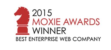 Best Enterprise Web Company