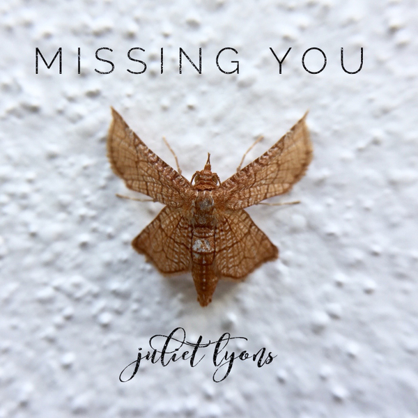 Missing You album cover.jpg