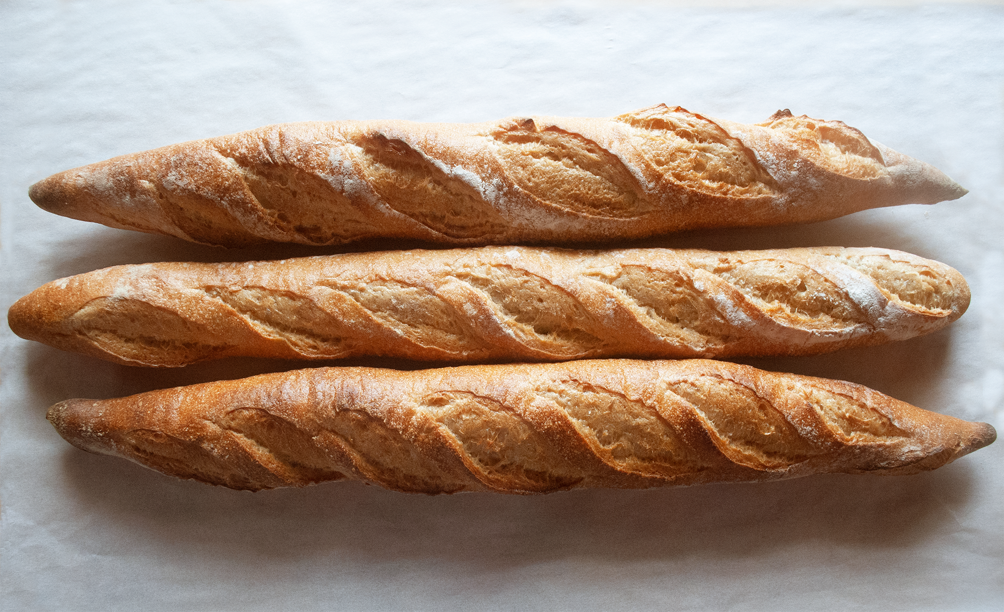 baguettes2resized.png