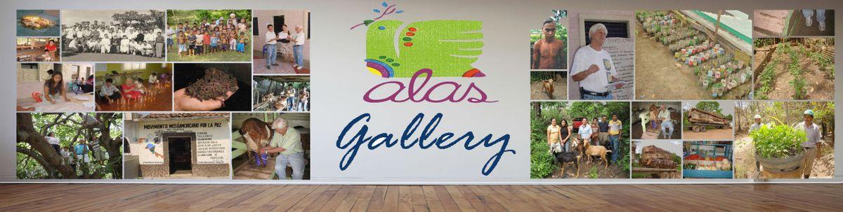 Banner Gallery.jpg