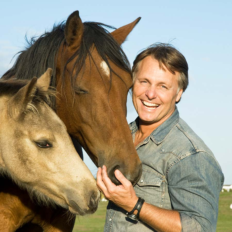 Equine Facilitated Coaching