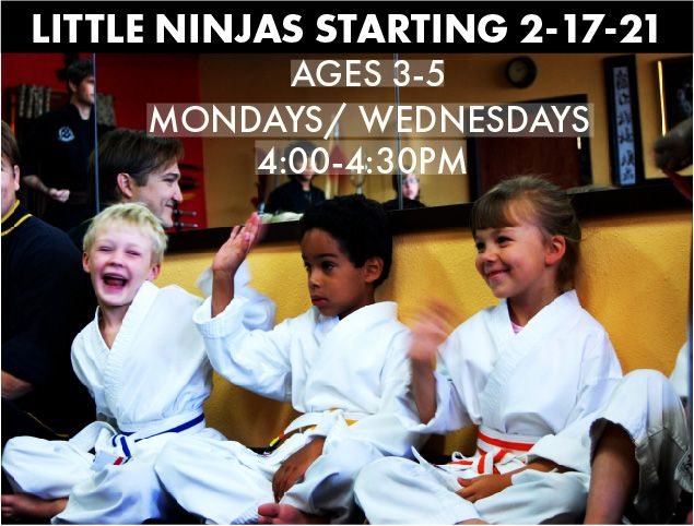 The Little Little Ninjas are Back!