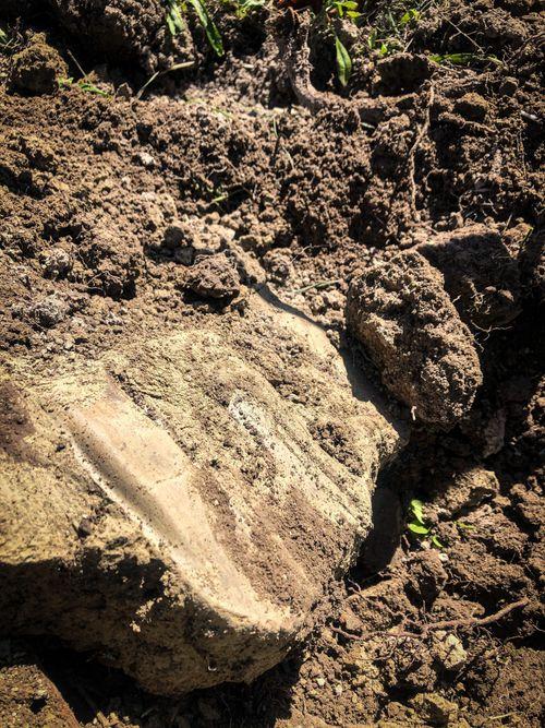 Limestone Soils