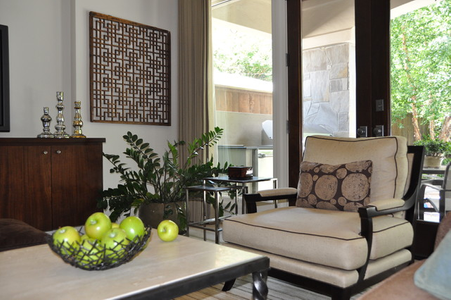 Transitional interior design - Houston, TX living room