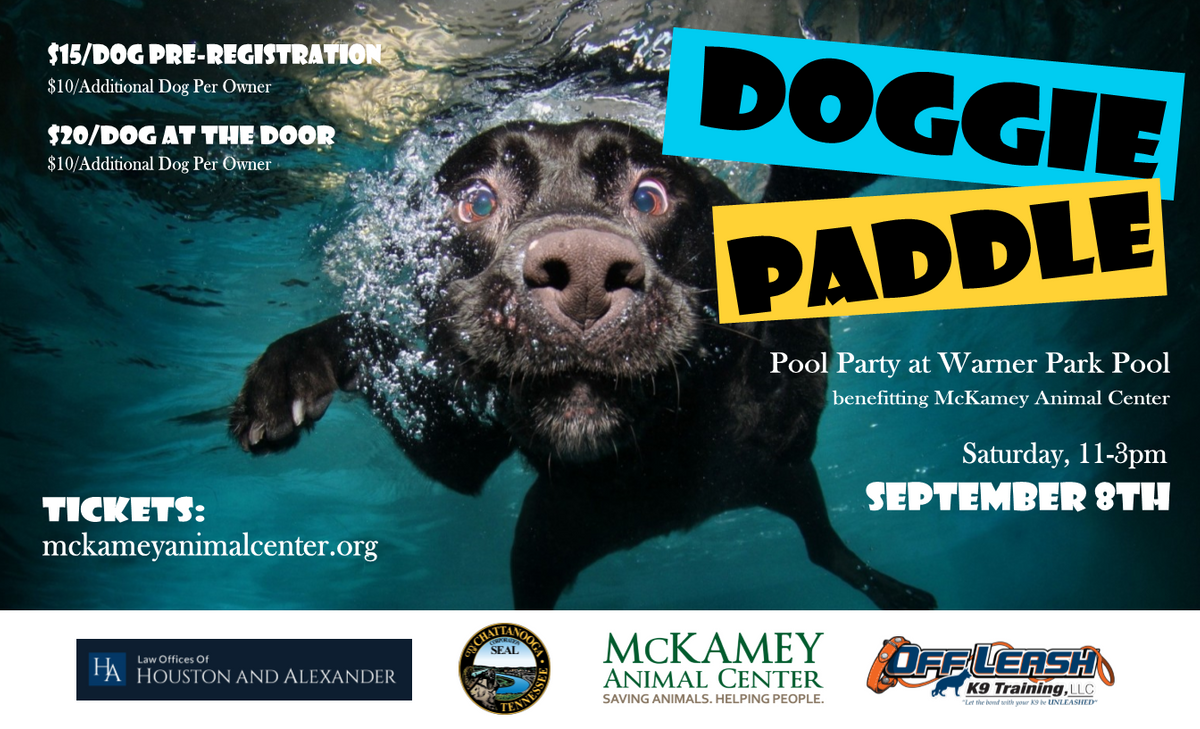 Doggie Paddle Poster-96.png