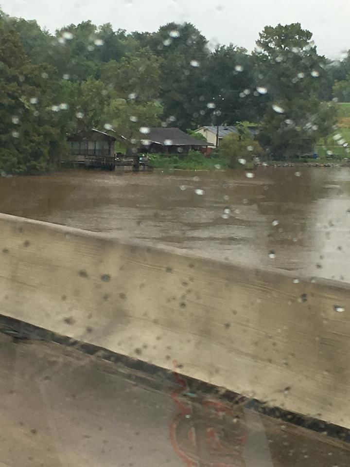 Flood L.jpg