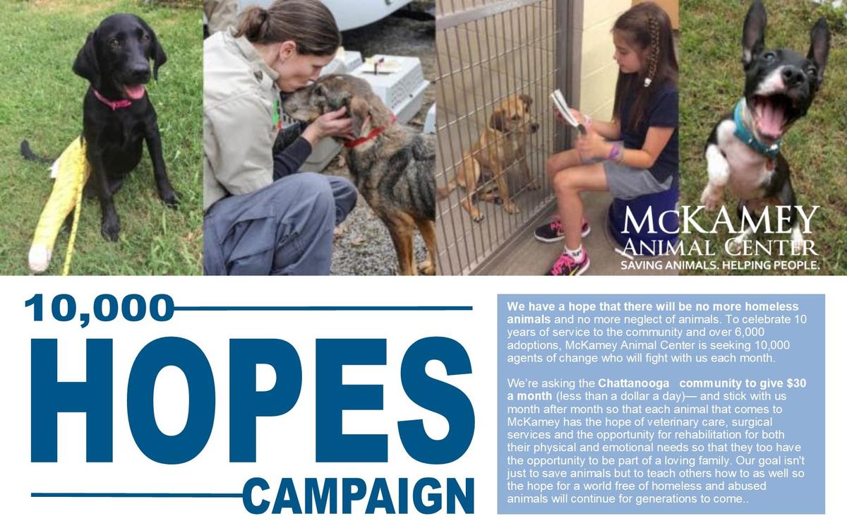 10,000 Hopes Website2.jpg