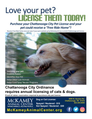 License Your Pet - FLYER 6-7-2018.jpg