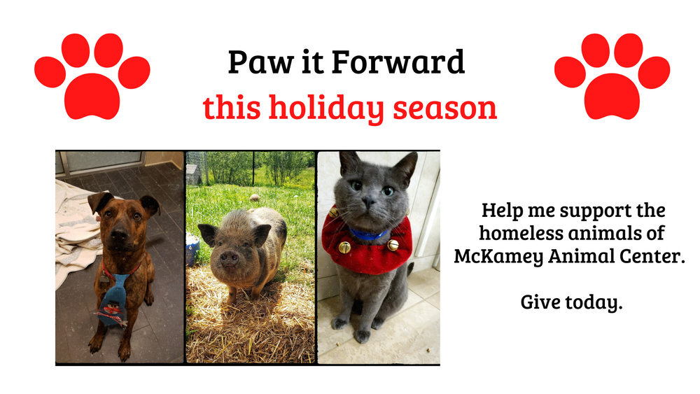 Paw it Forward this holiday season.png