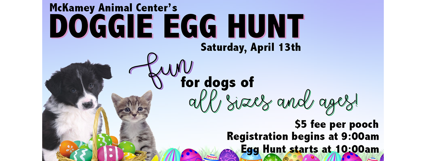 Doggie Egg Hunt-website.png