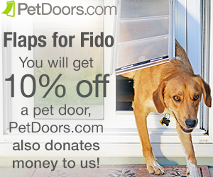 flapsforfido_photo_250x300.png