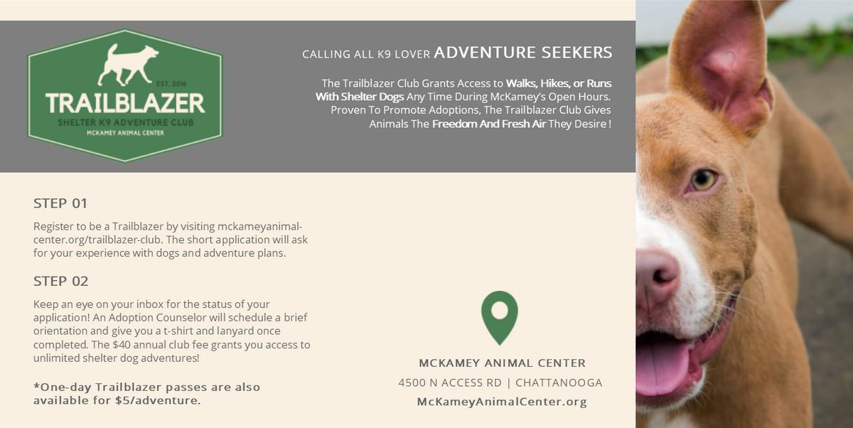Trailblazer Poster Website.png