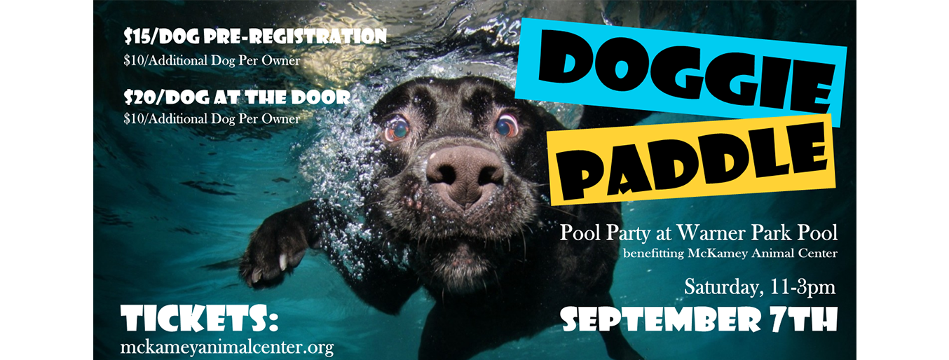 Doggie Paddle Poster-96 %281%29.png