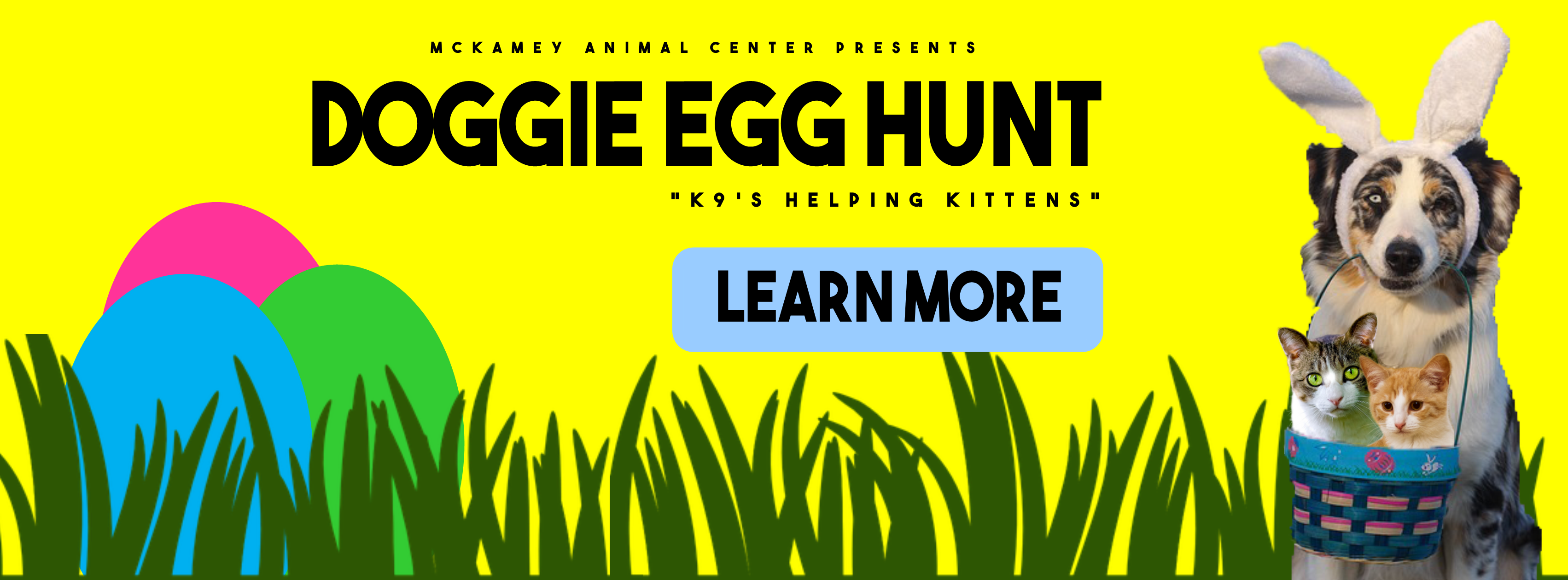 Doggie Egg Hunt Cover Photo Website.png