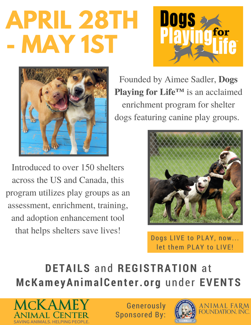 Dogs playing for life flier.png