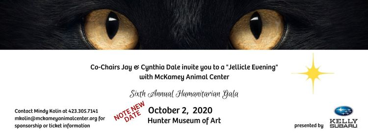 Copy of Gala Invite (1).jpg