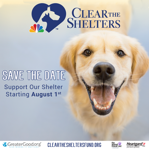 Clear-the-Shelters-Save-the-Date-Dog-Square.png
