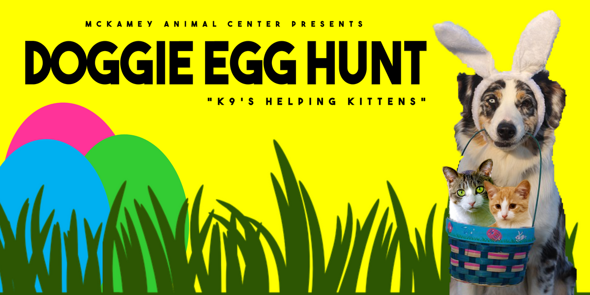 Doggie Egg Hunt Cover Photo.png