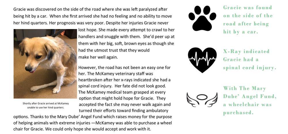 Gracie Story2.jpg