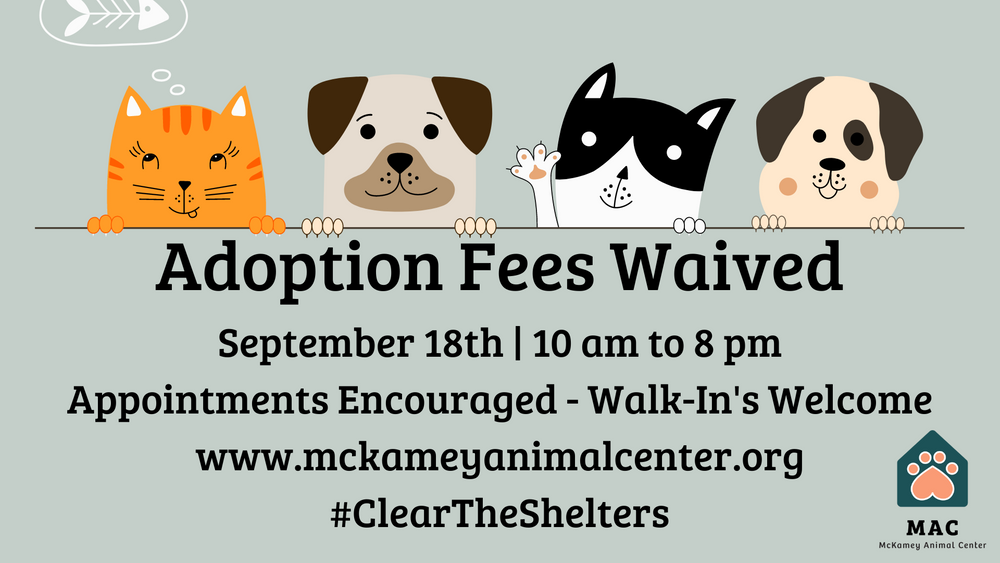 Copy of Adoption Fees Waived September 18th  10 am to 8 pm (1).png