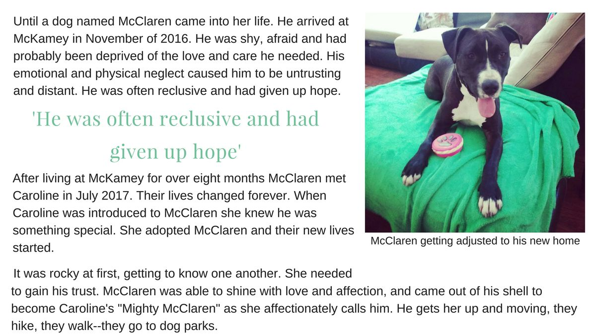 McClaren2.jpg