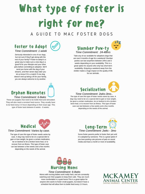What type of foster is right for me_ (1).jpg