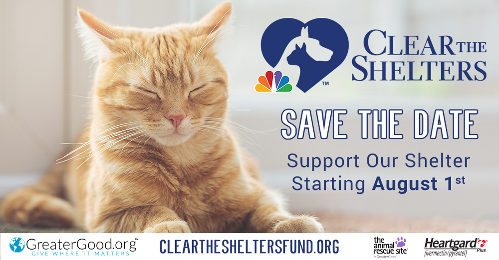 Clear-the-Shelters-Save-the-Date-Cat-Rectangle.png