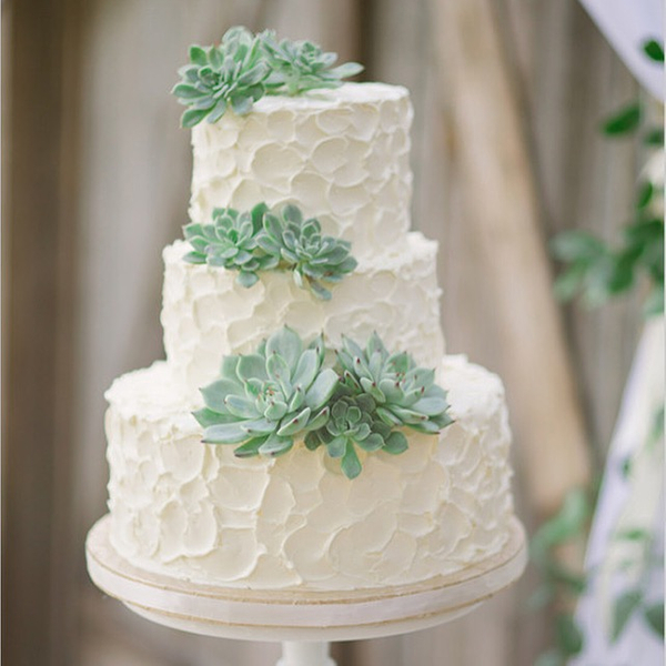 Wedding Cake with Succlents