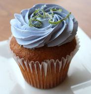 Lavender and Lime Cupcake Bakery in Austin, Texs