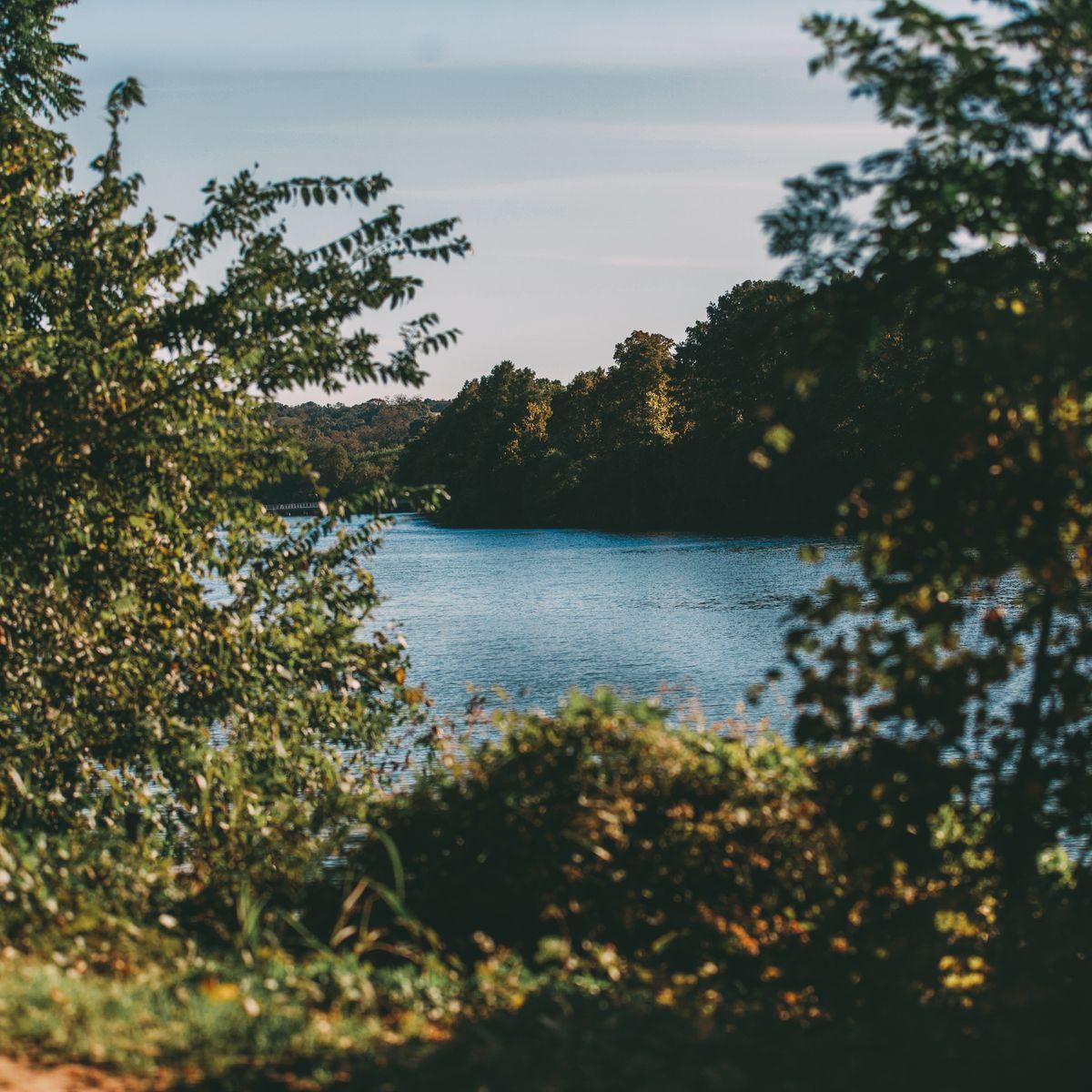 Lady Bird Lake Condos