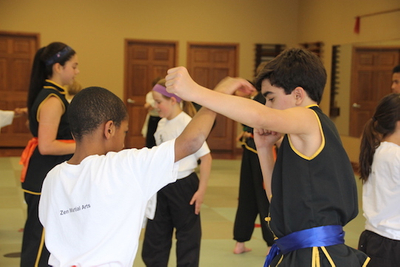 Youth Martial Arts Programs