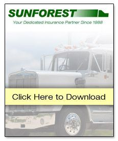 sunforest download.jpg