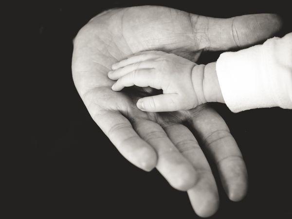 Child's Hand in Parent's (liane-metzler).jpg