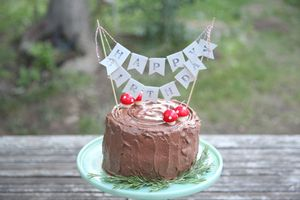 Black Forest Stump Cake