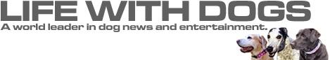 logo-tv-nu-1.jpg
