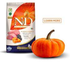 nd-pumpkin-formula.jpg