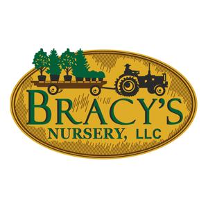 partners_bracys.png