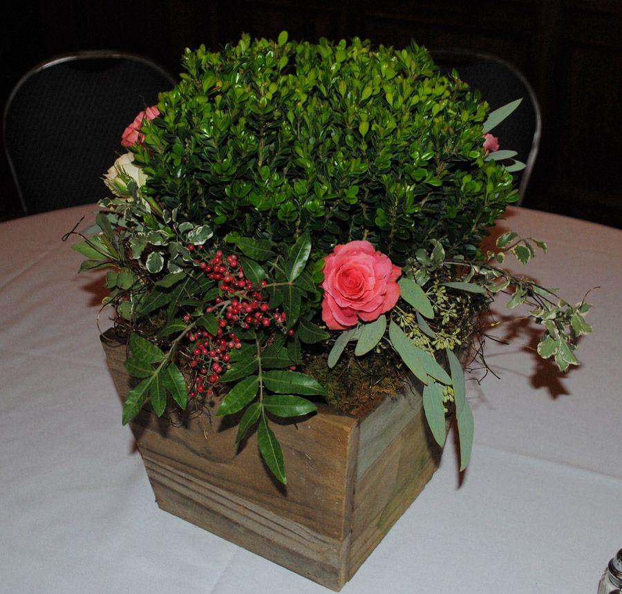 floral (1).jpg