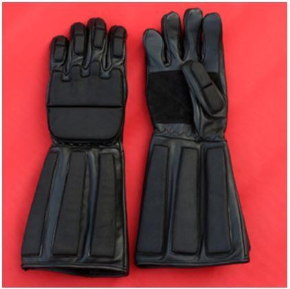 HEMA Kevlar Gloves.JPG
