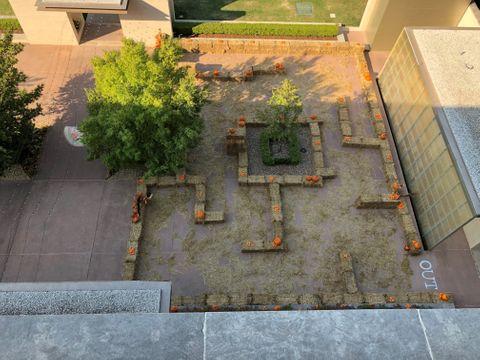 Our Maze