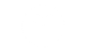 pill icon.png