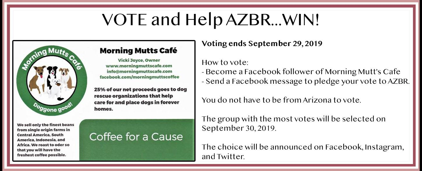 Morning Mutts Cafe Contest 2019.jpg