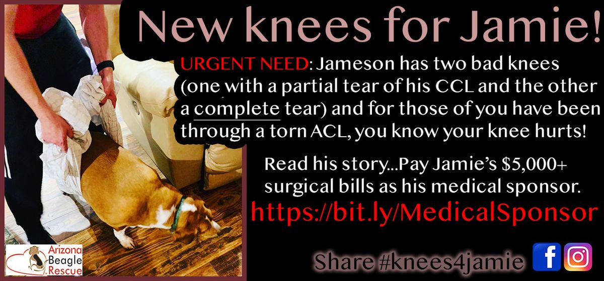 Support Knees for Jamie - a Medical Foster.jpg