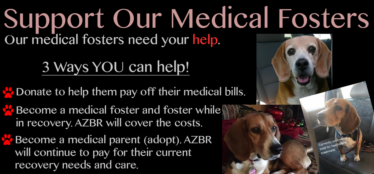 Support Our Medical Fosters.png