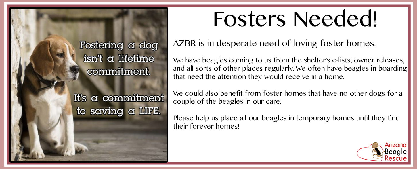 Fosters Needed January 2017.png