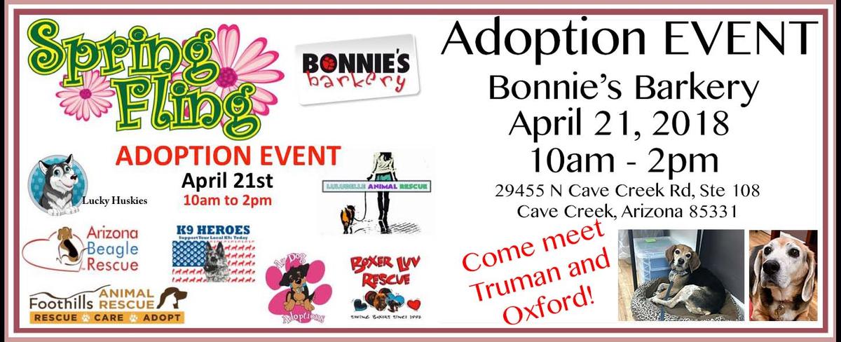 Monthly Adoption Event Slide_BonniesBarkery.jpg