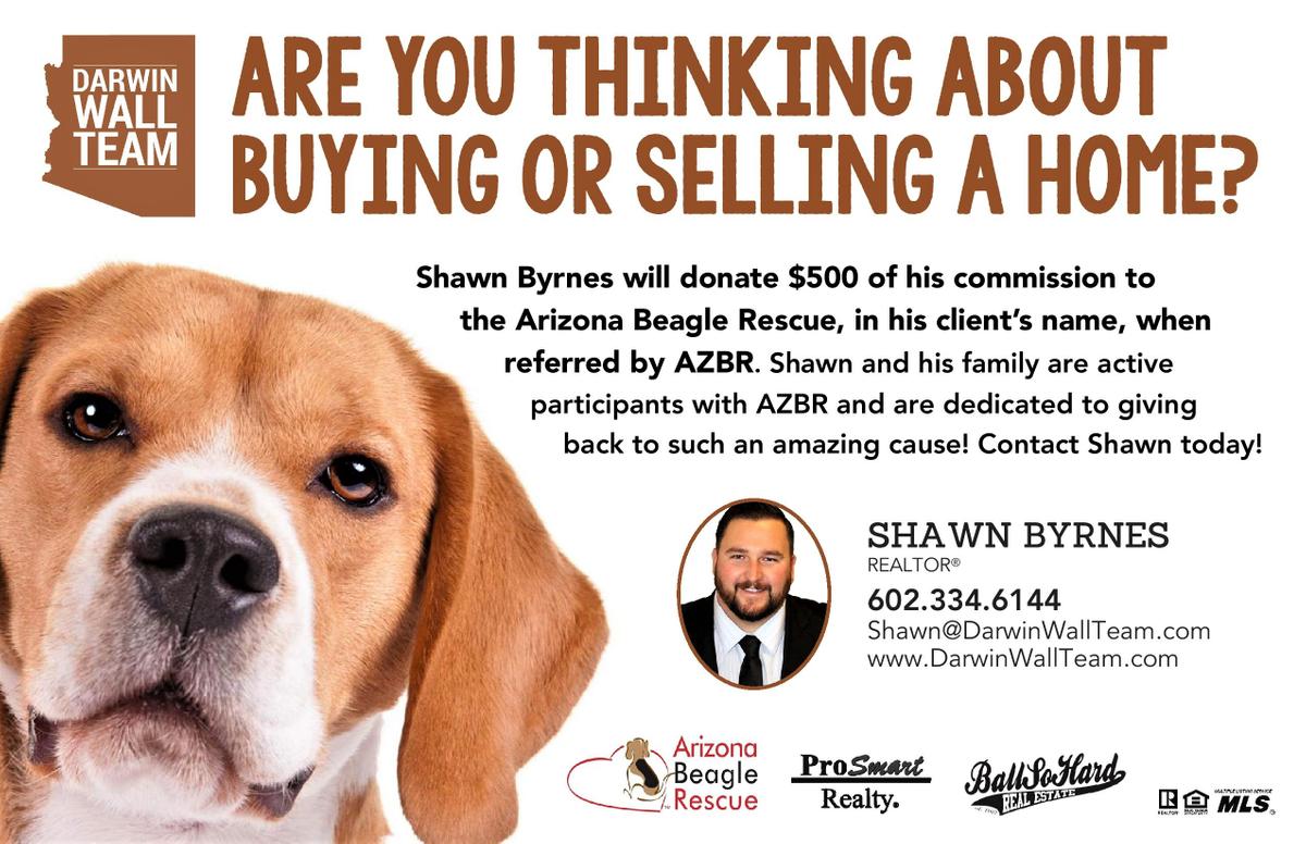 Shawn Beagle Rescue.jpg